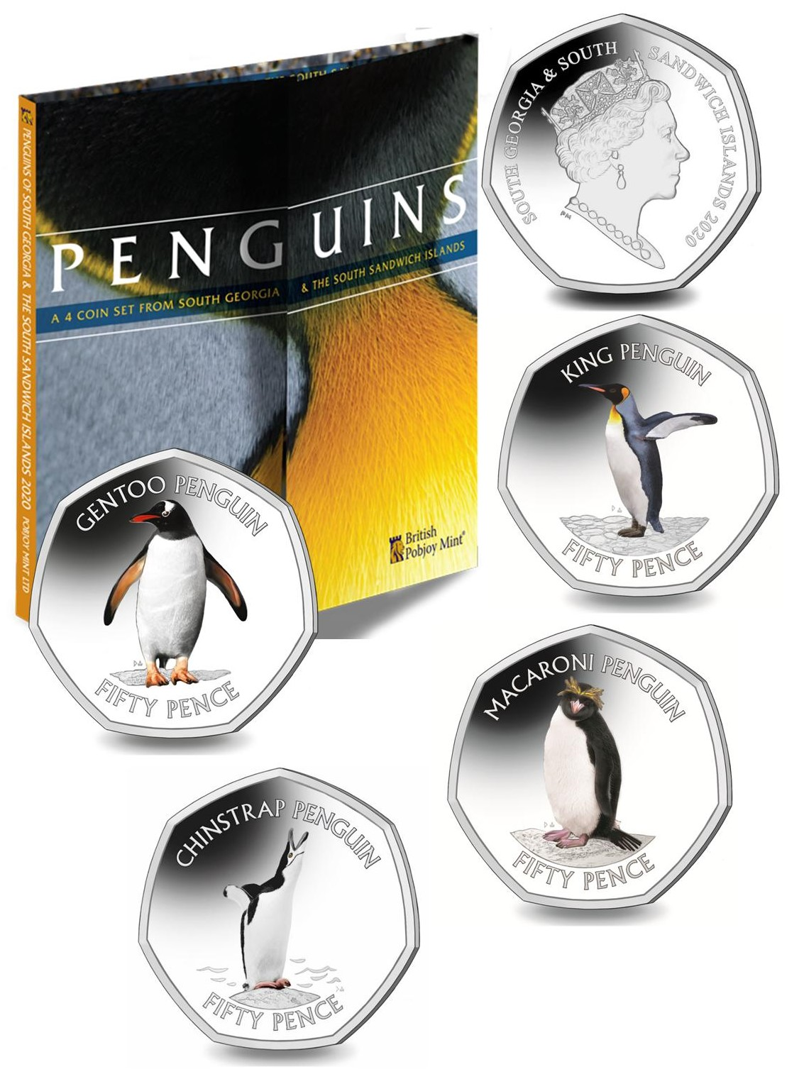 South Georgia 2020 Penguins